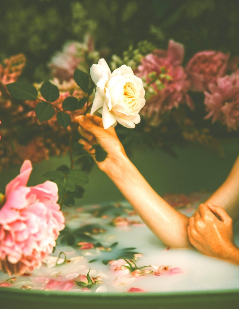 As Fresh as a Rose: 12 Organic Skin Care Products Based on Rose Oil